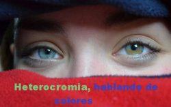 Heterocromia, hablando de colores