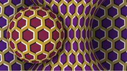 Akiyoshi Kitaoka -Ilusión óptica 1