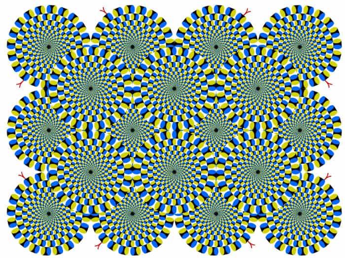 Akiyoshi Kitaoka -Ilusión óptica 2